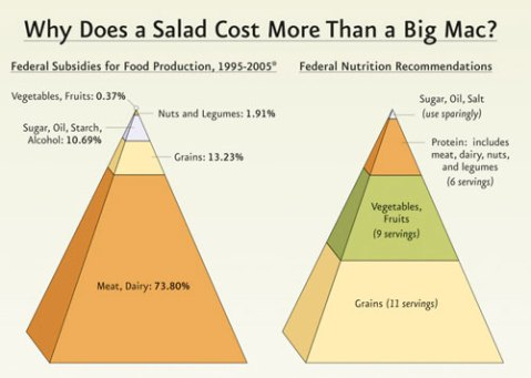 salad-vs-big-mac.jpg